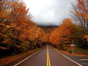 Vermont-Fall-Foliage-Stowe